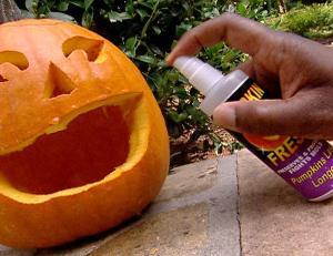 Pumpkin_Preservation_lg